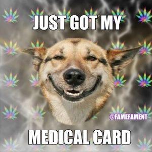 marijuana memes funny Stoner Dog